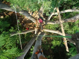 The Pitchandikulam Treehouse