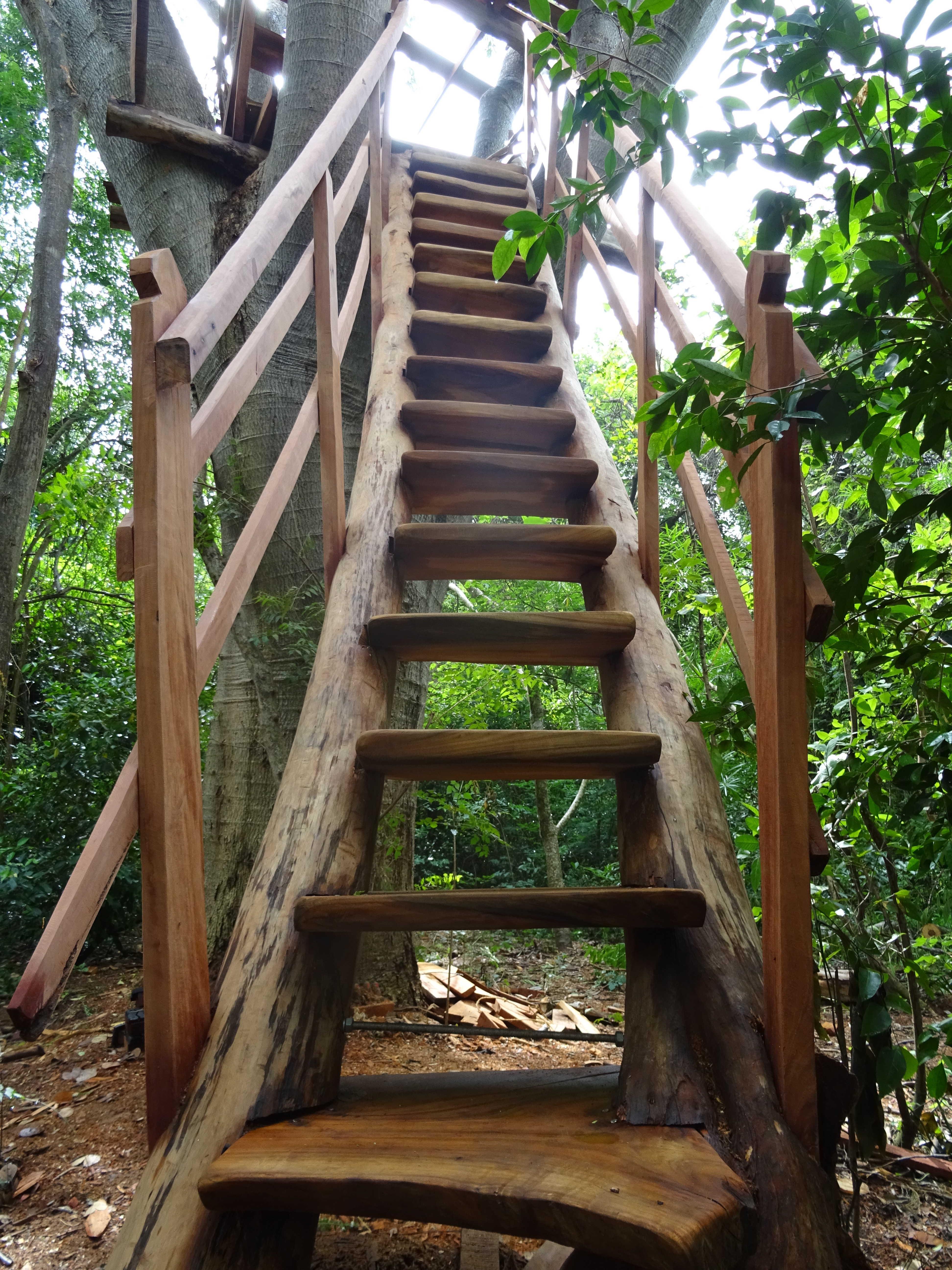 I Quickly Dashed Up The Stairs To Instal A Plaque Iu0027d Made For The Treehouse  Which Included Some Details About When ...