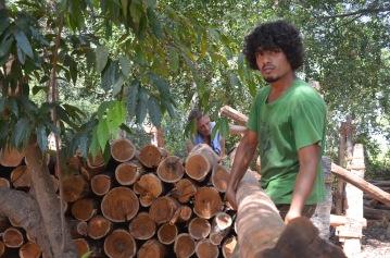 2016-3 TH2 mahogany (468)