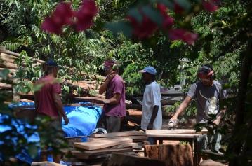 2016-3 TH2 mahogany (484)