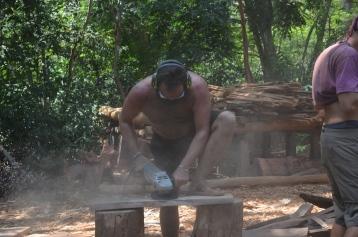 2016-3 TH2 mahogany (505)