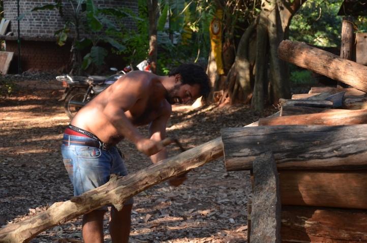 2016-3 TH2 mahogany (540)
