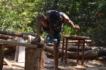 2016-3 TH2 mahogany (591)