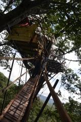 valkkivi-giraffehouse-38