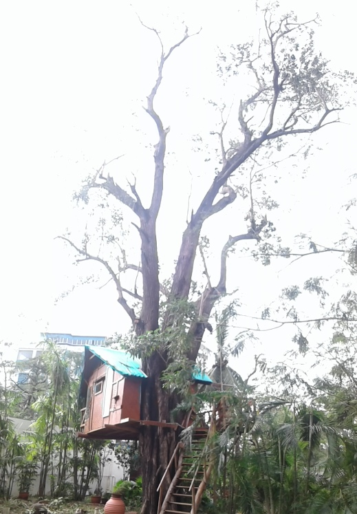 After Cyclone