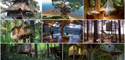 Top Treehouses from around the world
